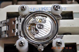DSC_9866.JPG